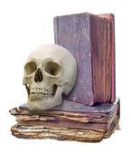 Crânio e dois livros antigos — Fotografia Stock