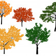 Five color trees isolated on white — Stock Vector