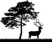 Deer near large pine — Stock Vector