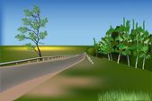 Road in green forest under blue sky — Stock Vector