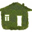 Simple house from green moss — Stock Photo
