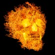 Skull in flame on black background — Stock Photo