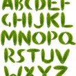 Alphabet from green leaves isolated on white — Stock Photo