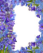 Blue floral frame on white — Stock Photo
