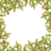 Green fir branches frame isolated on white — Stock Photo