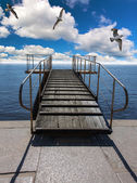 Gulls above pier in sea — Stock Photo