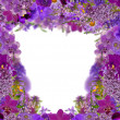Lilac color frame from flowers — Zdjęcie stockowe