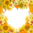 Stock Photo: Yellow flowers frame on white