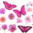 Set of pink color flowers and butterflies isolated on white — Stock Photo #34903523