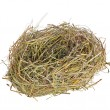 Single nest from grass isolated on white — Stock Photo