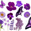 Set of lilac color butterflies and flowers — Stock Photo #34917021