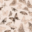 Seamless background from group of butterflies — Stock Photo
