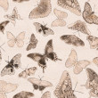Stock Photo: Seamless background from group of butterflies