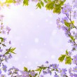 Stock Photo: Lilac blossom branches frame on light background