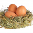 Stock Photo: Three eggs in grass nest on white