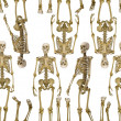 Background from human skeletons — Stock Photo