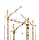 Group of four yellow hoisting cranes isolate on white — Stock Photo