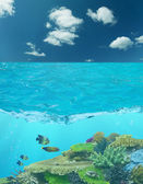 Cay under blue water and cloud sky — Stock Photo