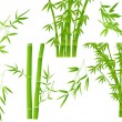 Green illustration with set of bamboo branches — Stock Vector