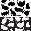 Isolated black and white cat collection — Imagen vectorial