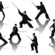 Seven kung fu men with swords on white — Stock Vector