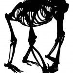 Gorilla skeleton silhouette isolated on white — Stock Vector #36752185