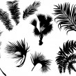 Stock Vector: Palm and fern leaves silhouettes isolated on white