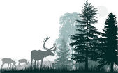 Three deers near gren forest — Vector de stock