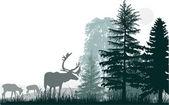 Three deers near gren forest — Stockvector