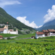 Stock Photo: Chateau d'Aigle, Switzerland