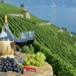Red wine and grapes on the terrace of vineyard in Lavaux region, — Stock Photo #20809555