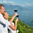 Man and woman tasting wine among vineyards in Lavaux, Switzerlan — Stock Photo #20809813