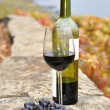 Glass of red wine and a bottle on the terrace of vineyard in Lav - Stock Photo