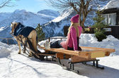 Girls on the sledge. Braunwald, Switzerland — Stock Photo