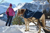 Girl and a horse against Alpine panorama — Stock Photo