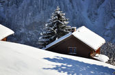 Alpine scenery, Braunwald, Switzerland — Stock Photo