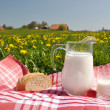Jug of milk and bread on spring meadow. Emmental region, Swi — Stock Photo #20841719