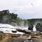 Rhinefall in Schaffhausen, Switzerland, the largest Waterfall in — Stock Photo #20870851