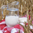 Jug of milk among wheat ears — Stock Photo #20875053
