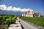 Chateau d'Aigle, Switzerland — Stock Photo