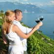Man and woman tasting wine among vineyards in Lavaux, Switzerlan — Stock Photo