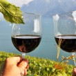 Two hands holding wineglases against vineyards in Lavaux region, — Stock Photo