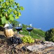 Red wine and grapes on the terrace of vineyard in Lavaux region, — Stock Photo #20883861