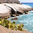 Rocky coast of Tenerife island, Canaries — Stock Photo
