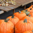 Pumpkins — Stock Photo #20921015