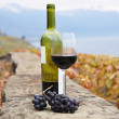 Glass of red wine and a bottle on the terrace vineyard in Lavaux — Stock Photo