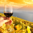 Wineglass in the hand against vineyards in Lavaux region, Switze — Stock Photo