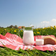 Jug of milk and bread on spring meadow. Emmental region, Swi — Stock Photo #20923557