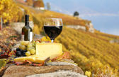 Red wine and grapes on the terrace of vineyard in Lavaux region, — Stock Photo