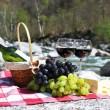 Red wine, cheese and grapes served at a picnic. Verzasca valley, — Stock Photo #20935583